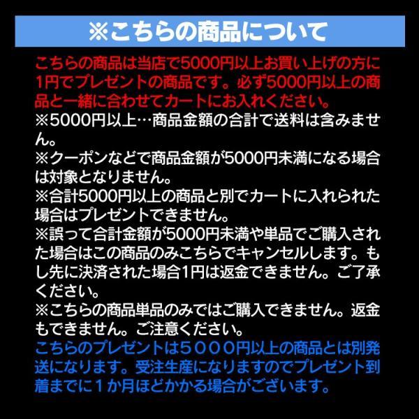ナンバープレートキーホルダー 1円でプレゼント 5000円以上お買い上げの方のみ / この商品だけのご購入はできません|kuruma-com2006|04