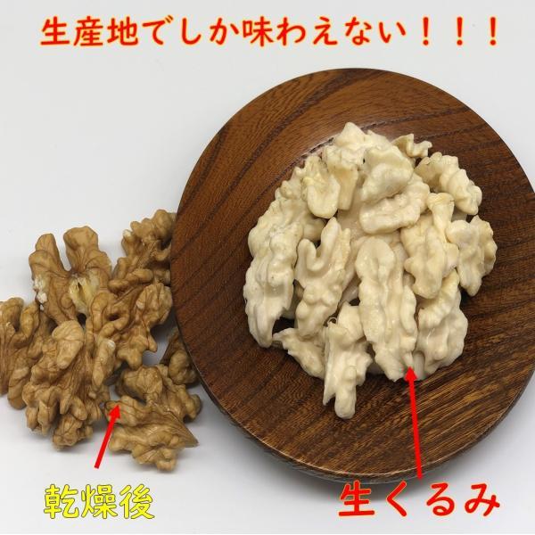 生くるみ 信濃くるみ / 乾燥前の殻付きで50個入り 期間限定商品 数量限定 料理 サラダ 健康|kurumi-alfarm|02