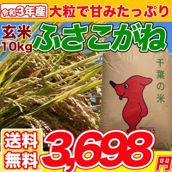 令和3年産 新米 ふさこがね 10kg 米 お米 白米 玄米 発送可能 送料無料