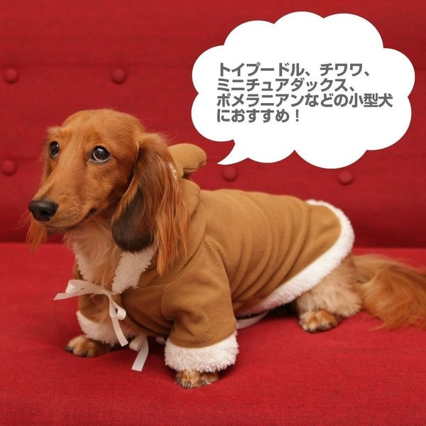 犬 猫 小型犬 サンタ ペット トナカイ コスプレ 2019衣装 防寒|kusunokishop|06