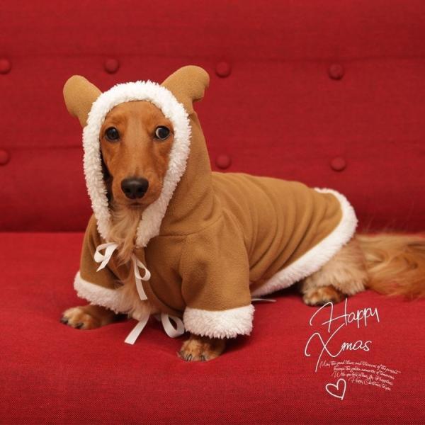 犬 猫 小型犬 サンタ ペット トナカイ コスプレ 2019衣装 防寒|kusunokishop|08