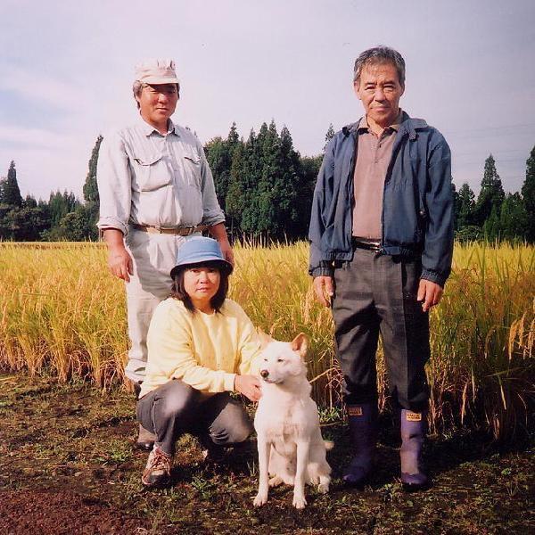 新米 米 10kg 30年 魚沼産コシヒカリ 白米 特別栽培米 最高級の お米(発送は10/8日頃から)|kuwaharasyoten|05