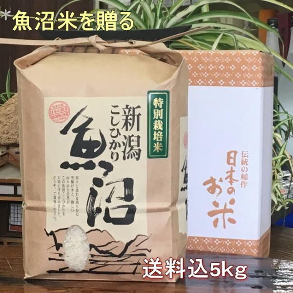 米 5kg 魚沼産コシヒカリ 米 特A 一等米 送料込 内祝いギフト箱入(最高級 米 2021 特別栽培米)777020