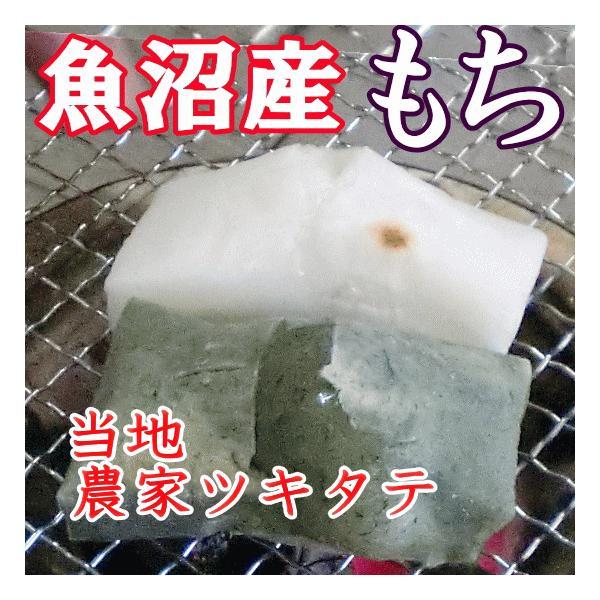 餅 もち お餅 1kg 送料込 白餅+よもぎ餅 各500g 魚沼産 切り餅 こがねもち 76493