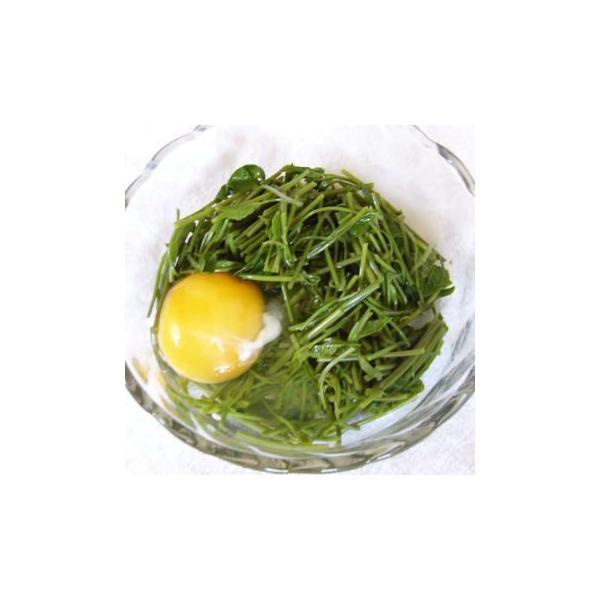 山菜 木の芽 アケビノメ 新芽 きのめ アケビの芽 130g前後 4月〜5/20頃78015|kuwaharasyoten|04
