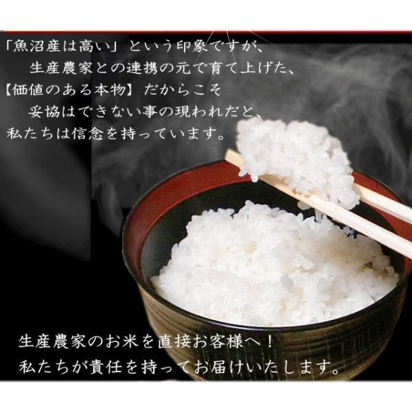 お中元 ギフト 特産 蕎麦 米 酒 八海山ハイボール セット|kuwaharasyoten|07