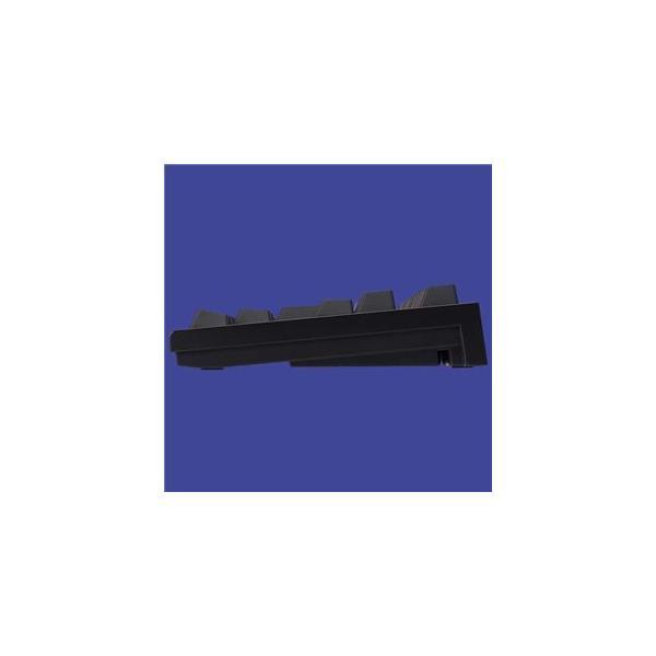 東プレ REALFORCE TKL SA R2 日本語テンキーレスキーボード(91配列+APC機能+静音):黒|kwelfare|04