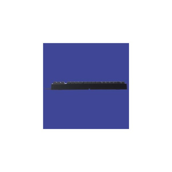 東プレ REALFORCE TKL SA R2 日本語テンキーレスキーボード(91配列+APC機能+静音):黒|kwelfare|05