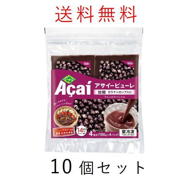 【送料無料】アサイー スムージー(ガラナ入り) 100g×40袋 フルッタ 冷凍 アサイーピューレ