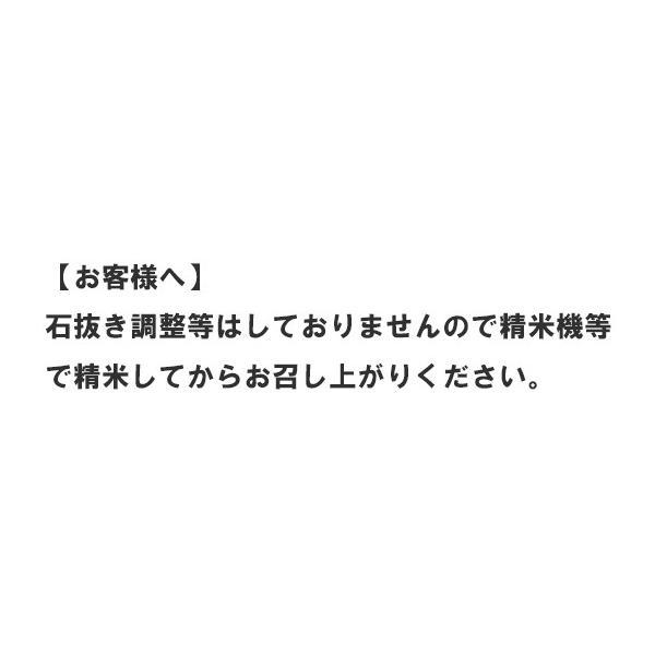 数量限定 地区金賞ゆめぴりか 平成28年度 JAあさひかわ産 玄米 30kg|kyokushoku|04
