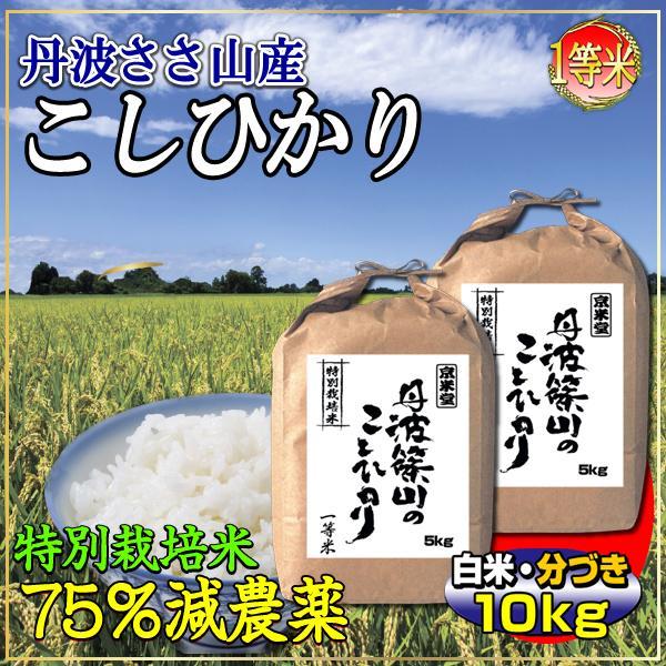 29年産 7.5割農薬減 コシヒカリ 10kg 兵庫県 丹波ささやま産 白米 分づき可 検査一等米 当日精米 送料無料|kyomaido