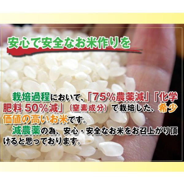 29年産 7.5割農薬減 コシヒカリ 10kg 兵庫県 丹波ささやま産 白米 分づき可 検査一等米 当日精米 送料無料|kyomaido|05