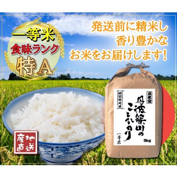 29年産 7.5割農薬減 コシヒカリ 10kg 兵庫県 丹波ささやま産 白米 分づき可 検査一等米 当日精米 送料無料|kyomaido|06