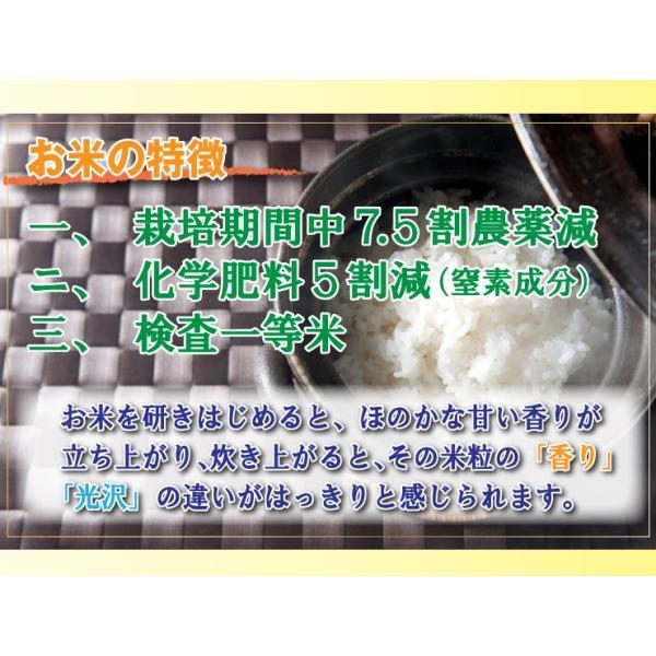 20%OFF 訳あり 28年産米 コシヒカリ 5kg 兵庫県 丹波ささやま産 7.5割農薬減 検査一等米 白米 当日精米|kyomaido|05