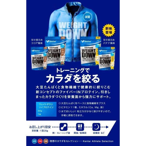 ケンタイ プロテイン プロテイン Kentai ウェイトダウン ソイプロテイン ココア風味 350g|kyomo-store|04
