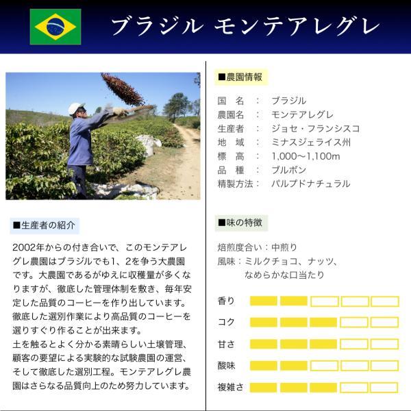 コーヒー豆 250g ブラジル モンテアレグレ ミルクチョコやナッツの風味|kyoto-coffee|02