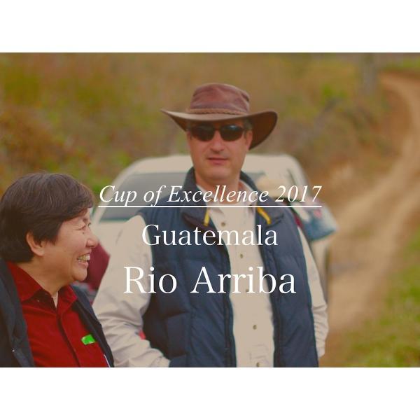 コーヒー豆 100g Cup of Excellence  グアテマラ リオ・アリバ 農園|kyoto-coffee