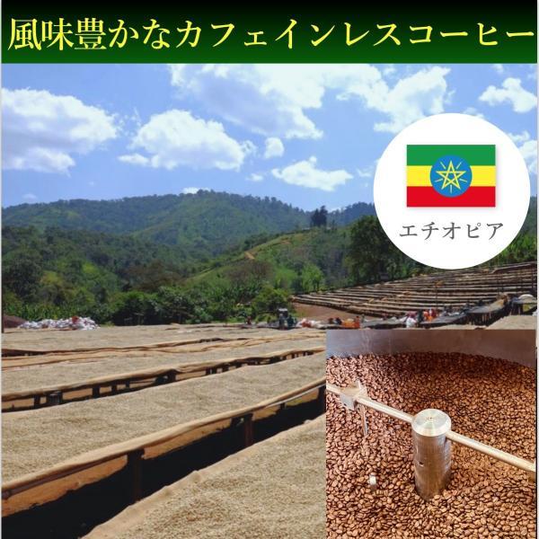 コーヒー豆 100g  デカフェ-カフェインレス- エチオピア モカシダモ|kyoto-coffee