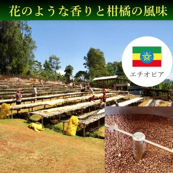 コーヒー豆 250g エチオピア グジ フローラルや柑橘の風味|kyoto-coffee