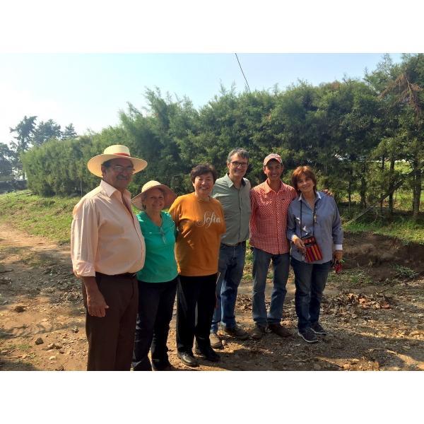 コーヒー生豆 100g グアテマラ サンホルヘ農園  マラカトゥーラ種|kyoto-coffee|05