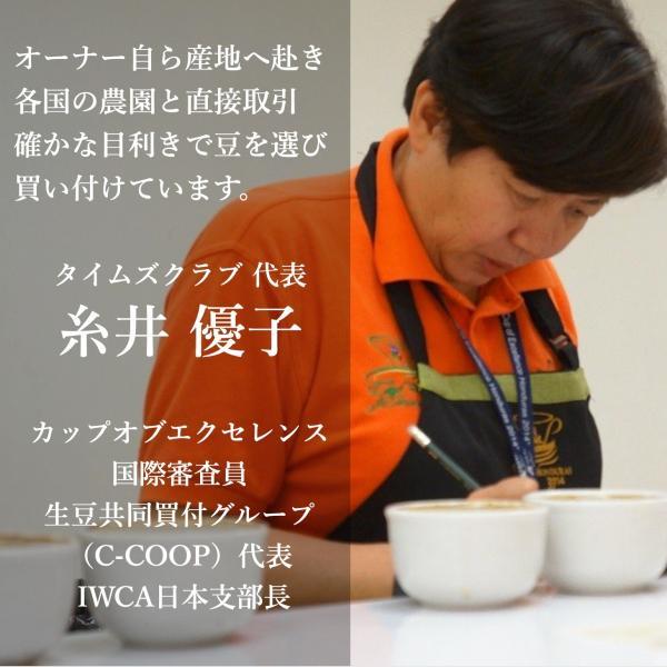 コーヒー豆  100g グアテマラ エルソコッロ 持続するさわやかな甘み|kyoto-coffee|03