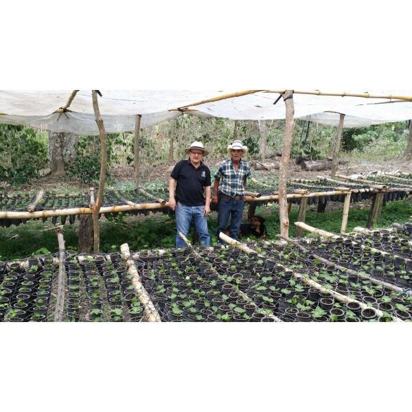 コーヒー豆 250g ニカラグア ラスプロメサス |kyoto-coffee|04