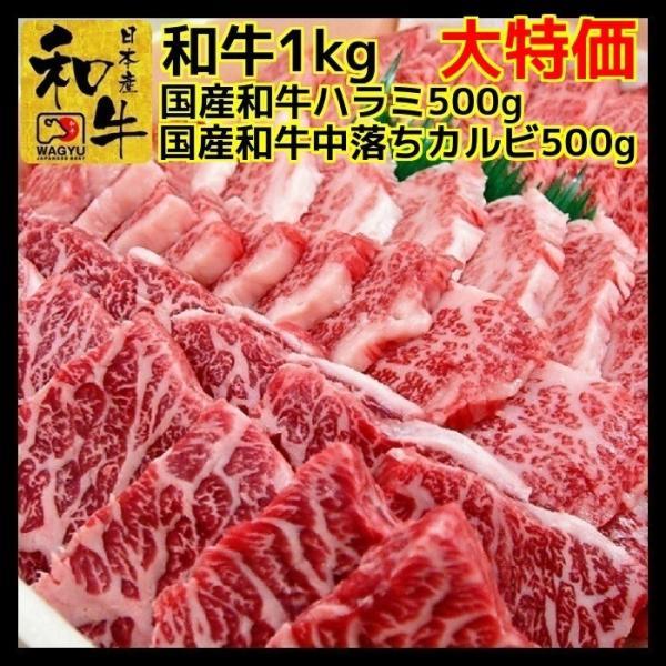 牛肉 肉 焼き肉 お歳暮 焼肉 国産 和牛 1kg 焼肉セット 和牛ハラミ 500g 中落ち カルビ 500g ギフト グルメ お取り寄せ|kyoto1129