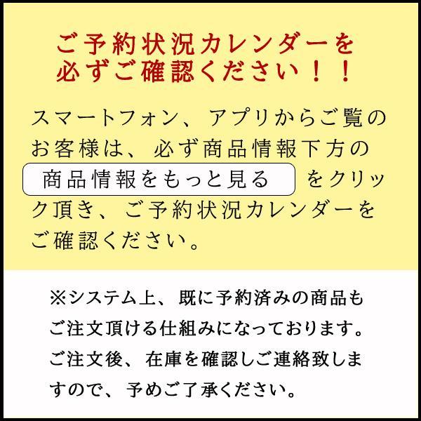 お宮参り レンタル着物 産着 男の子初着 B24 濃紺地 兜 虎 軍配|kyotokikuya|07