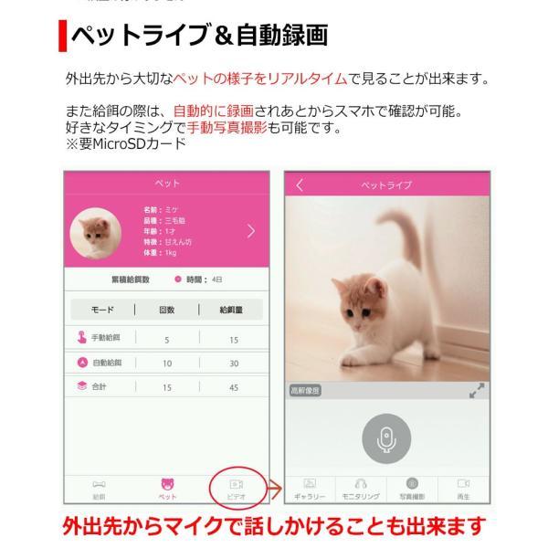 WiFi スマホ連動 自動給餌器 犬猫 ペットフィーダー 6.0L 自動給餌機 タイマー設定 音声録音 餌入れ 給餌器 自動餌やり 自動えさやり器 ペット 猫 犬|kyplaza634s|07
