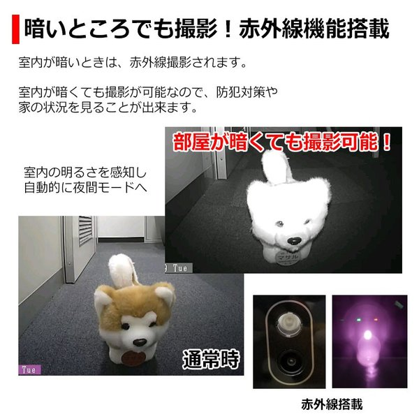 WiFi スマホ連動 自動給餌器 犬猫 ペットフィーダー 6.0L 自動給餌機 タイマー設定 音声録音 餌入れ 給餌器 自動餌やり 自動えさやり器 ペット 猫 犬|kyplaza634s|08