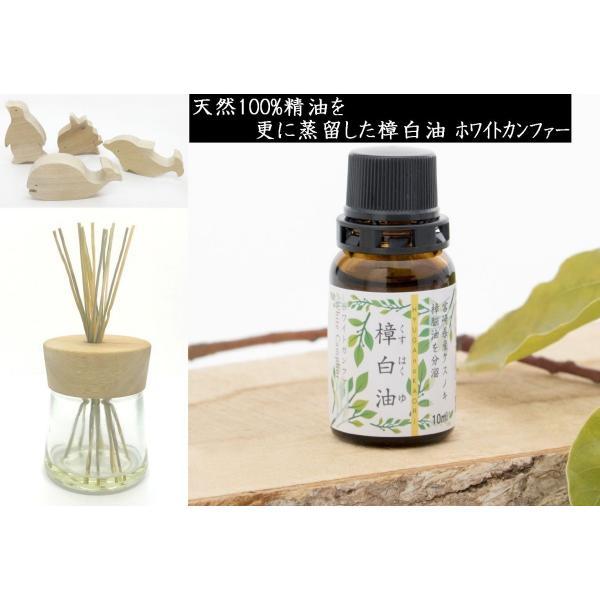 樟白油 ホワイトカンファー 天然アロマオイル 日向のかおり|kyusyusancyoku|02
