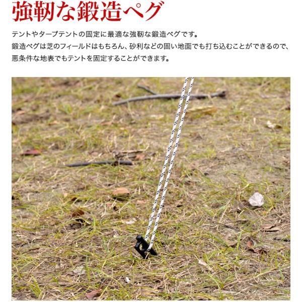 ペグ 鍛造ペグ テント用ペグ4本セット 送料無料 メール便|l-design|04