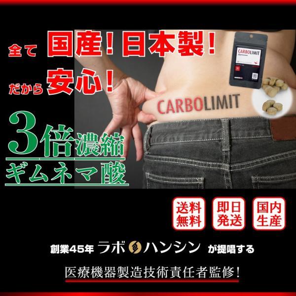 糖質制限 糖質オフ ダイエット サプリ 30代 40代 50代 カーボリミット ギムネマ 国産 送料無料 C1|labo-hanshin|02