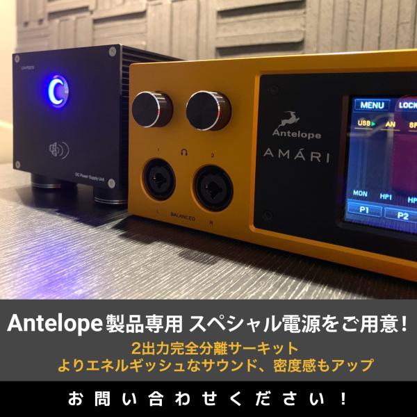 到着、在庫あり! Antelope Audio アンテロープ オーディオ AMARI 高性能DAC ヘッドフォン アンプ|lacasaacustica|05