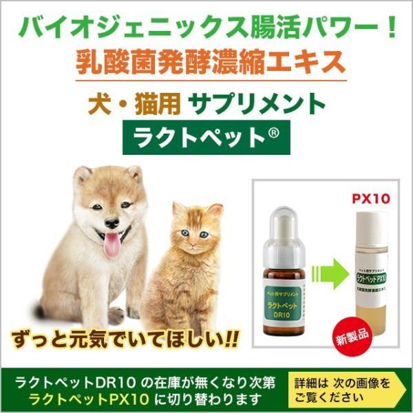 犬 猫 ネコ ねこ ペット用 サプリメント 乳酸菌 酪酸 発酵食品 天然成分100% 無添加 アミノ酸 ミネラル クレンズフード 濃縮エキス 日本製 ラクトペットDR10|lactopetdr10
