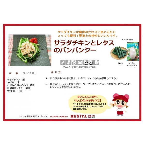 サラダチキン アマタケ プレーン味5個セット TVで話題 パワーサラダ|lalasite|03