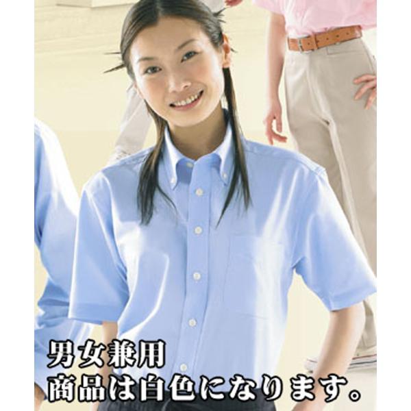 数量限定 半袖シャツ 白 ユニセックス 男女兼用 ボタンダウン SS〜5L 半そで もったいないセール ロス|lalasite
