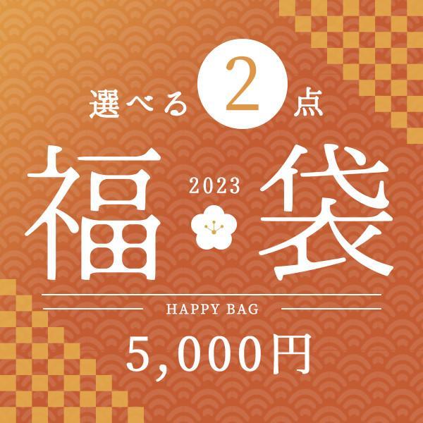福袋 インテリア 雑貨 小物 ゴミ箱 照明 クッション よりどり2点五千円福袋 アウトレット ZA2PC01|landmark