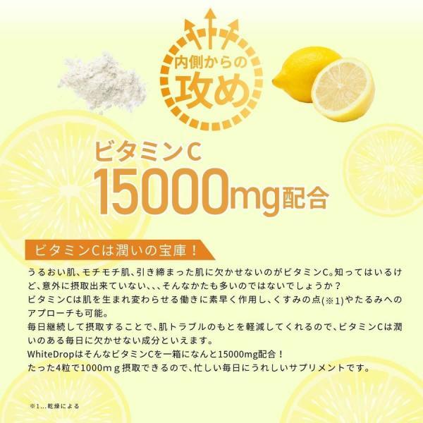 ビタミンC 15000mg ニュートロックスサン 3900mg セラミド リコピン 配合 飲む 日焼け止め サプリ 日本製 紫外線 対策  ランテルノ ホワイトドロップ 1箱 lantelno-store 03