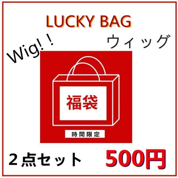 【即発送・バーゲン】福袋 ウィッグ コスプレ用 Wig 2点入り happybag luckybag
