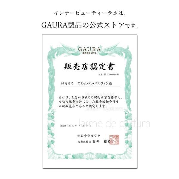 水素水専用アルミボトル 500ml 日本製 GAURA Bottle(ガウラボトル) 6色カラー展開 水素水ボトル 水筒 ボトル ポータブル持ち歩き 軽量 携帯 水素水|ldp|02