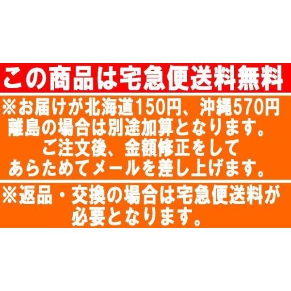 フィットネス水着 レディース 競泳水着 半袖 セパレート水着 スイムウェア 練習用 日本製 メール便送料無料 133 lemode1 13