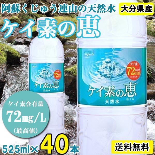 シリカ水 500ml 48本 ケイ素水 ケイ素の恵 高濃度シリカ水 ミネラルウォーター ケイ素水 天然水 軟水 シリカウォーター 水 大分県産 国産|lemonno-ki