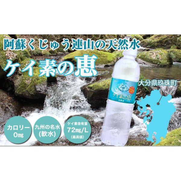 シリカ水 500ml 48本 ケイ素水 ケイ素の恵 高濃度シリカ水 ミネラルウォーター ケイ素水 天然水 軟水 シリカウォーター 水 大分県産 国産|lemonno-ki|02