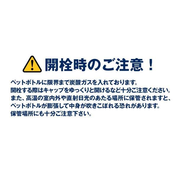 炭酸水 500ml 48本 最安値 強炭酸水 Spark スパーク プレーン まとめ買い 九州産 国産 純水 発泡水 スパークリングウォーター lemonno-ki 13