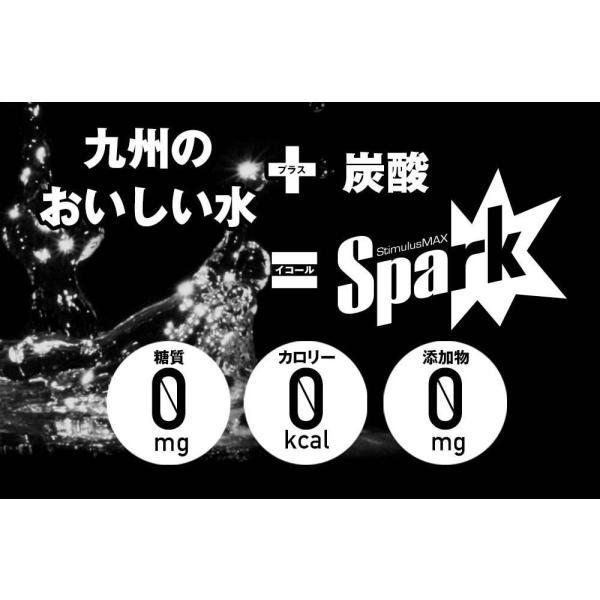 炭酸水 500ml 48本 最安値 強炭酸水 Spark スパーク プレーン まとめ買い 九州産 国産 純水 発泡水 スパークリングウォーター lemonno-ki 04