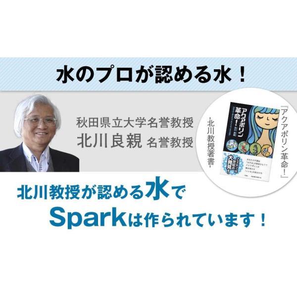 炭酸水 500ml 48本 最安値 強炭酸水 Spark スパーク プレーン まとめ買い 九州産 国産 純水 発泡水 スパークリングウォーター lemonno-ki 06