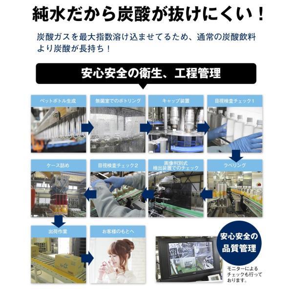炭酸水 500ml 48本 最安値 強炭酸水 Spark スパーク プレーン まとめ買い 九州産 国産 純水 発泡水 スパークリングウォーター lemonno-ki 09