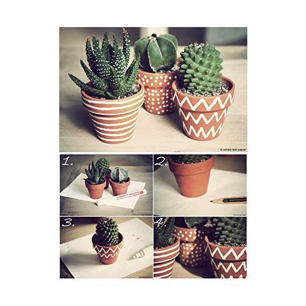 "12 PIECE SET 3/""L Stoneware Plate With Cactus"