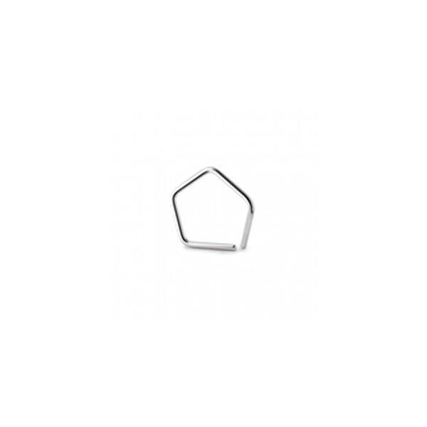 オーハウス OIML標準分銅 E2級 1mg (JCSS校正証明書付) 91400033